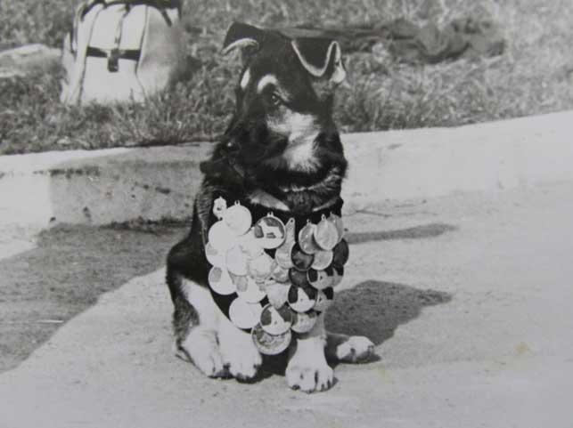 ИГО 3,5 месяца (ПИНСК 1986)